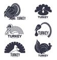 Set of turkey stylized graphic logo templates vector image