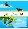 Card with birds flying together and alone bird vector image