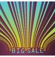 Big Sale bar codes all data is fictional EPS 10 vector image vector image