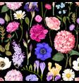 seamless garden flowers vector image