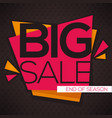 Big sale flyer template with lettering vector image