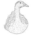 wild goose vector image