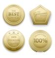 Polished gold metal badges vector image