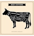Beef cow cuts butcher diagram vector image