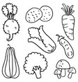 Hand draw vegetable of doodles vector image