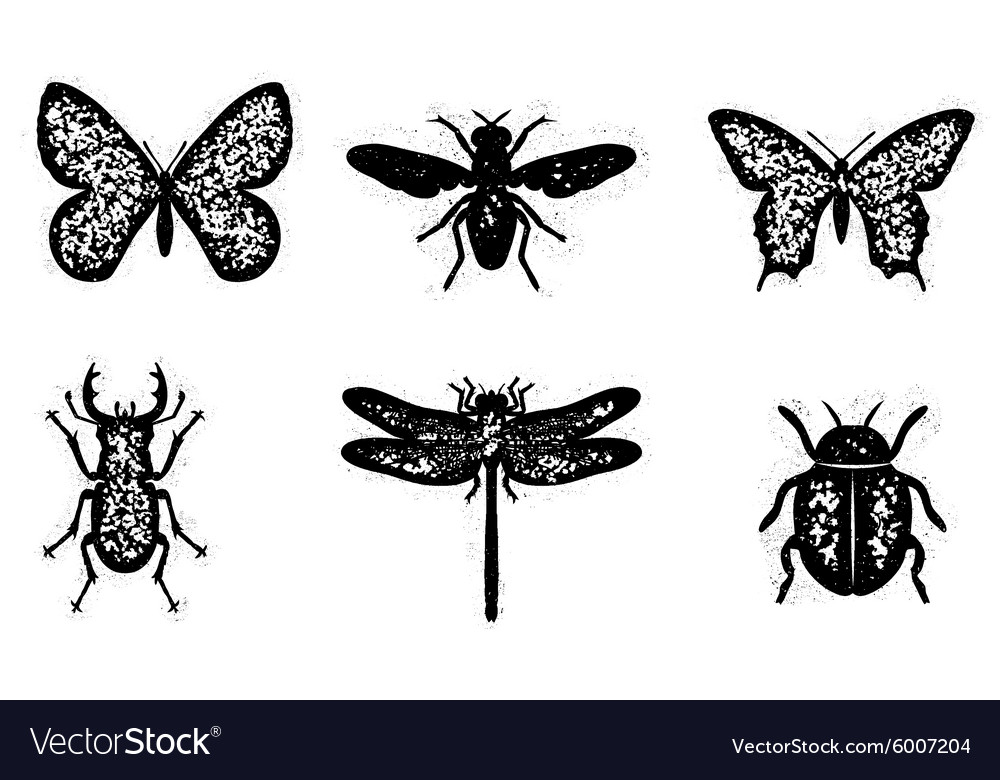 Dirty insect set vector