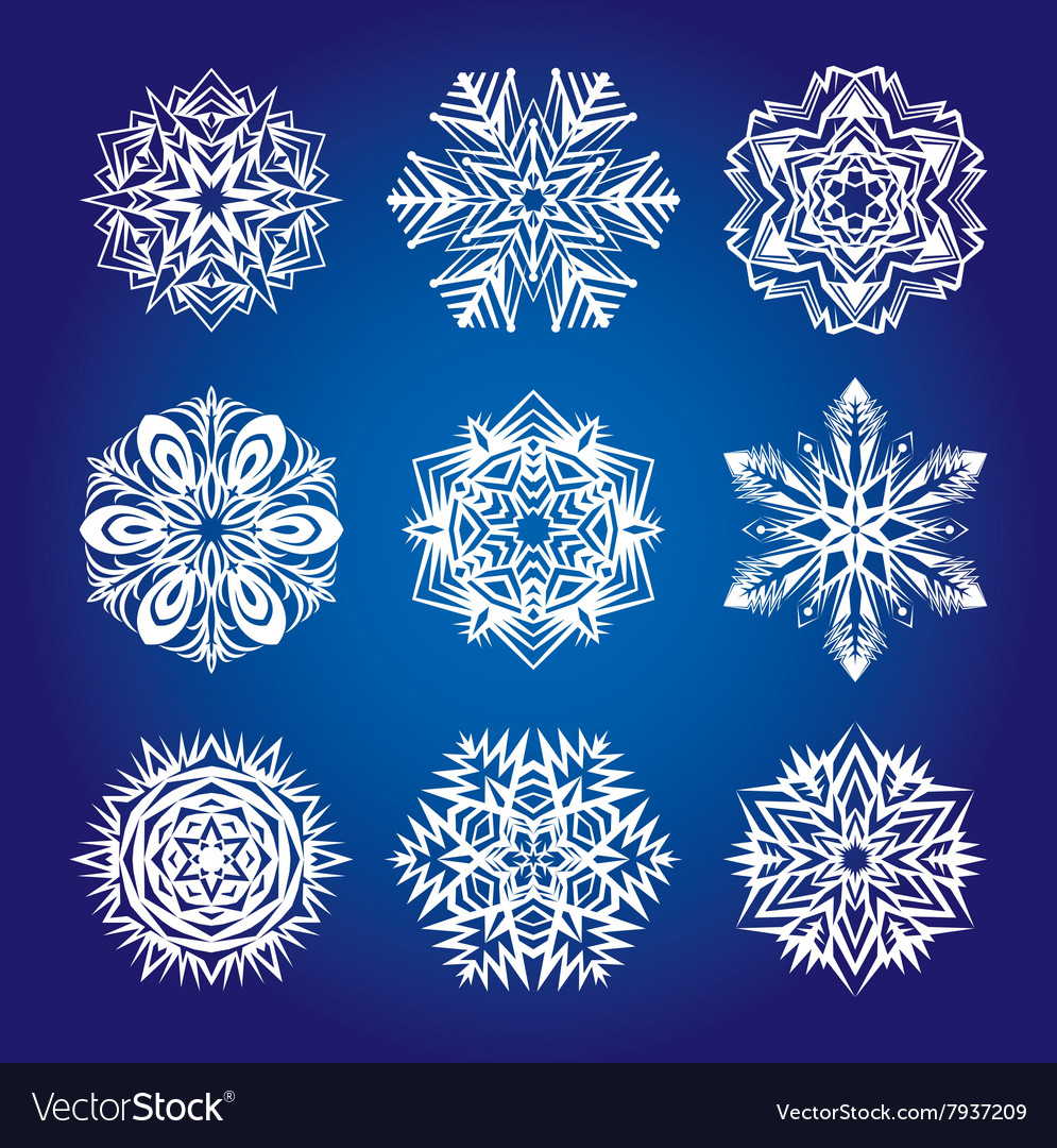 Collection of snowflakes or decorative rosettes vector