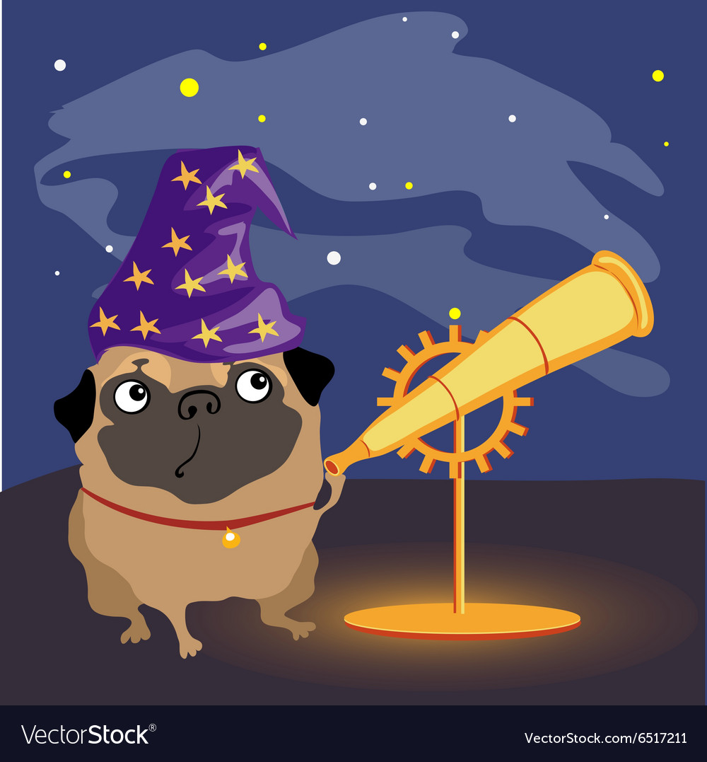 Scientist dog pug watching the stars vector