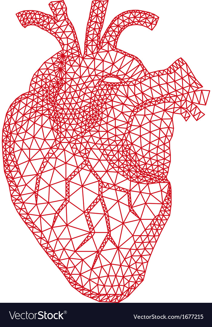 Human heart with geometric pattern vector