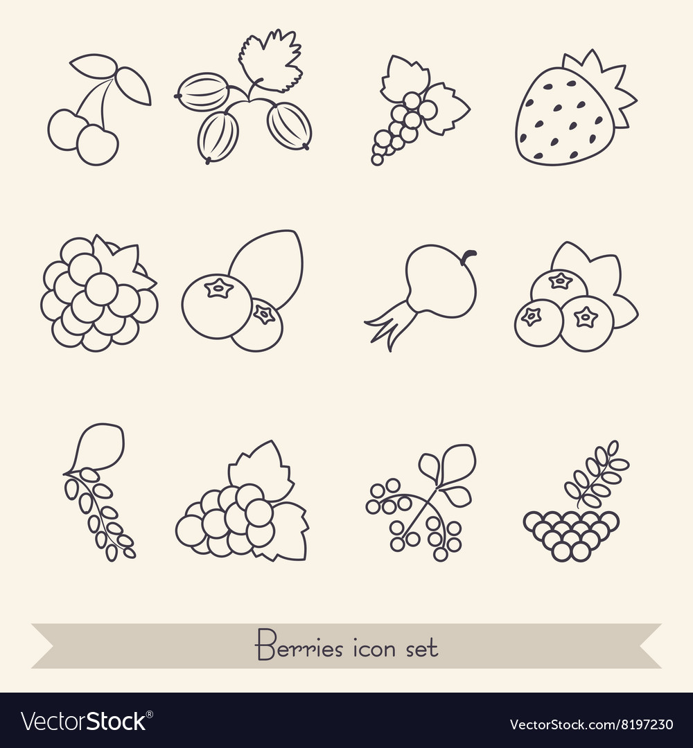 Set of berries icons vector