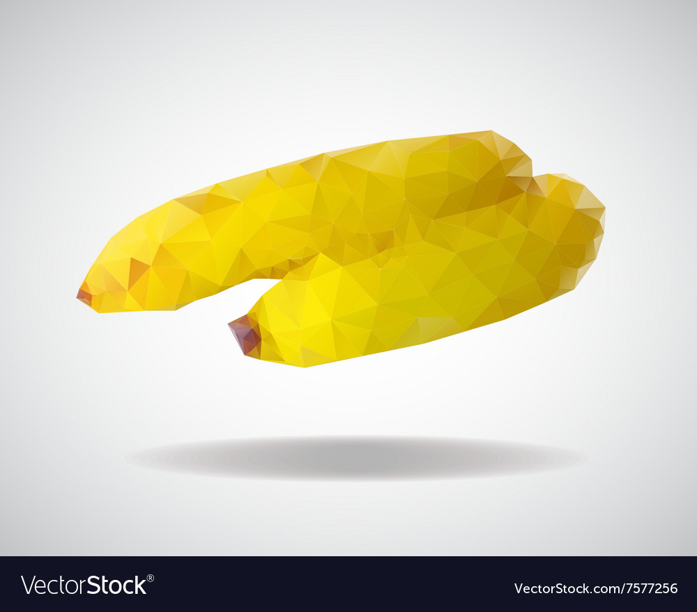 Low poly banana vector