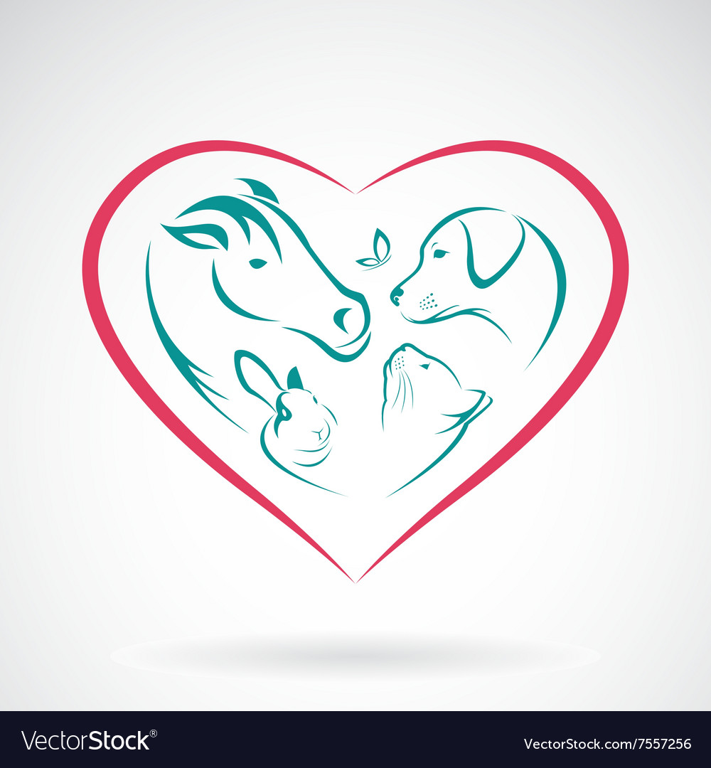 Pet heart vector