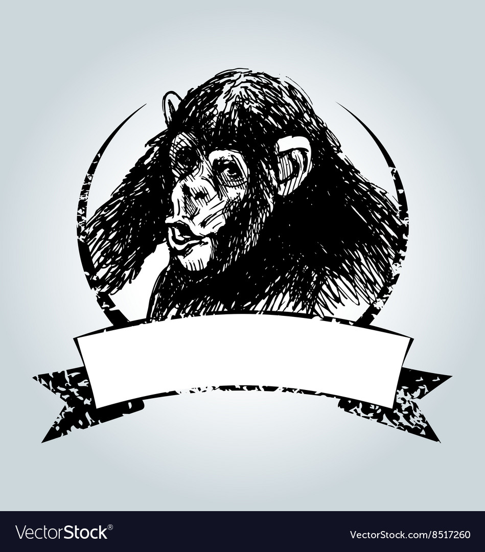 Vintage label with chimpanzee vector