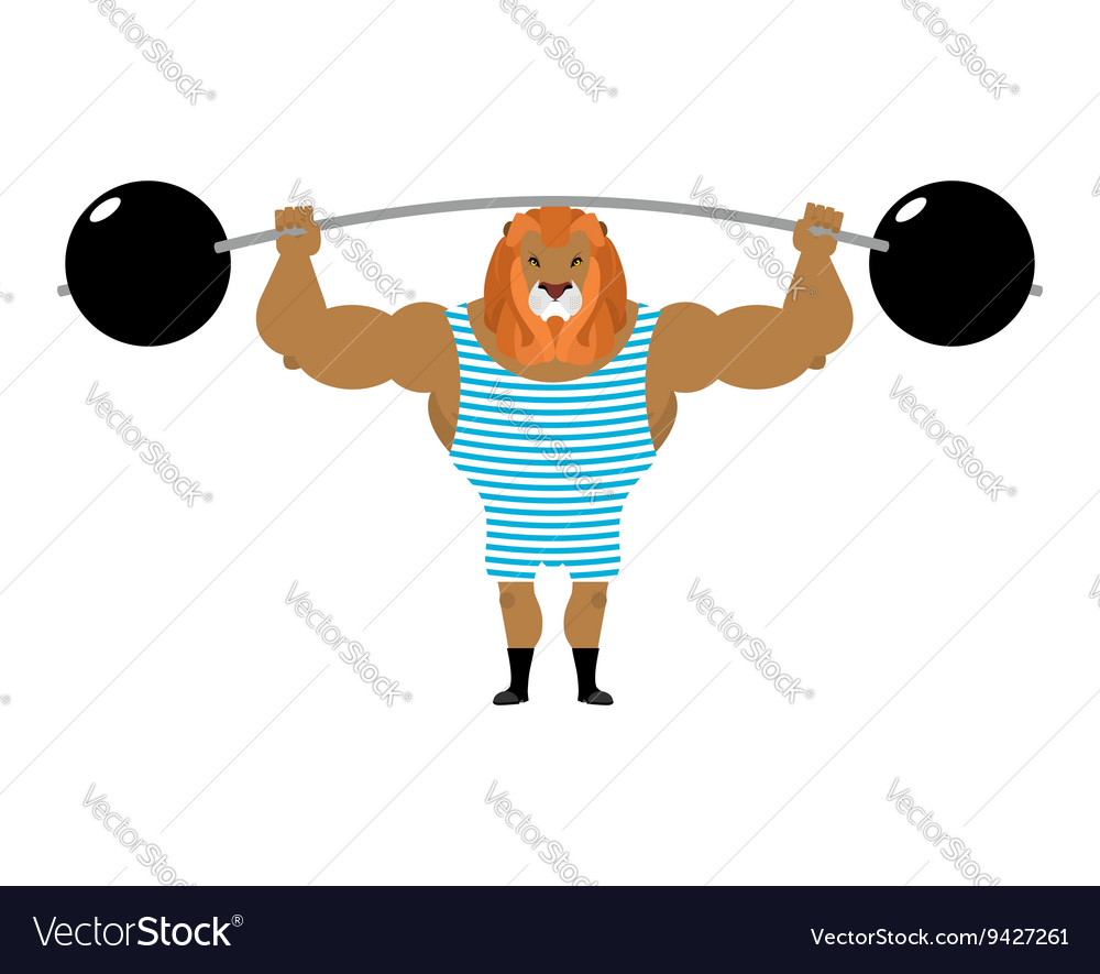 Circus lion strong retro athlete big beast in vector