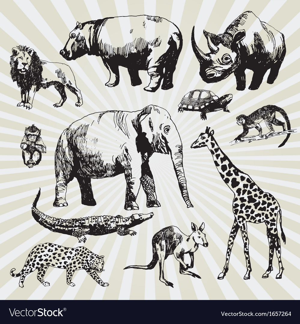 Exotic animals vector