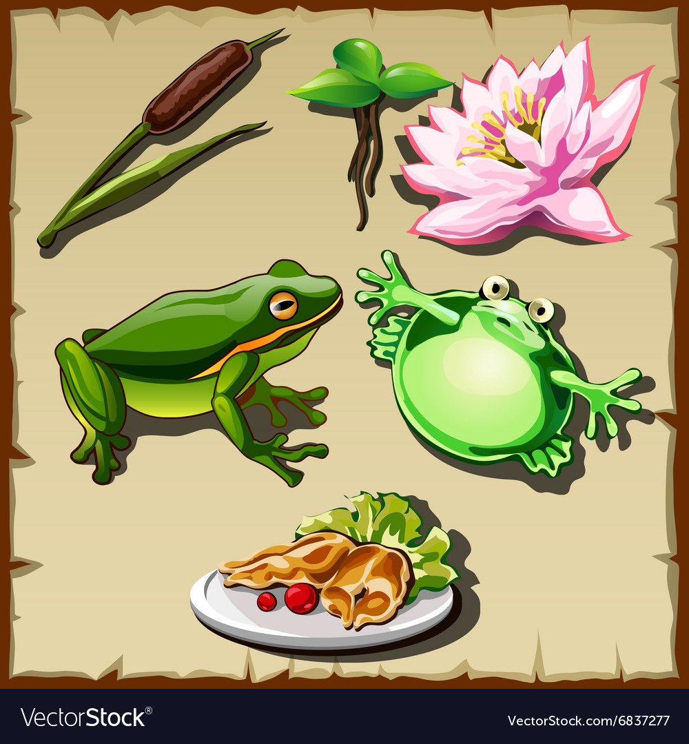 Great frog kingdom set of objects related vector