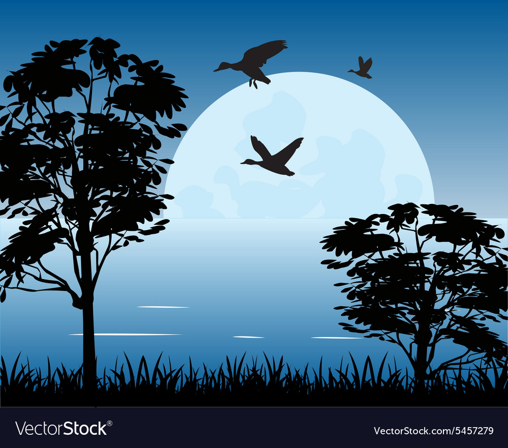 Moon on water vector