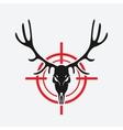 deer skull on red target vector image