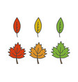 colorful leaves flat icons set vector image
