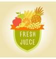 Logo symbol for fresh juice Hand drawn fruit vector image