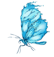 Water splash butterfly vector image