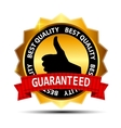 Best quality guaranteed gold label with red ribbon vector image vector image