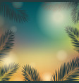 banner summer time with palm trees vector image