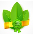 Green leaf with ribbon vector image