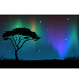 Silhouette field with aurora sky at night vector image