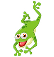 Cute frog jumping vector image