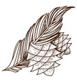 fir cones and branch logo protecting nature pine vector image