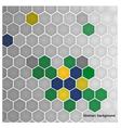 hexagon in Brazil flag concept vector image