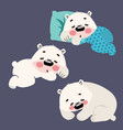 set of sleeping polar bears collection of cartoon vector image