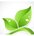 Green leaf with water droplets vector image