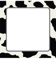 abstract cow skin texture vector image vector image