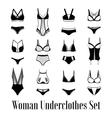 1607i029019Fm005c8female underwear black and white vector image vector image