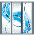 Greeting cards with snowflakes vector image