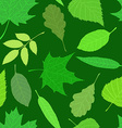 Spring texture vector image