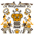 on the theme of food for dogs vector image