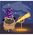 Scientist dog pug watching the stars vector image
