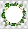 banner with palm and monstera tree leaf vector image