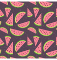 Watermelon colorful seamless pattern vector image