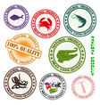 rubber stamps vector image
