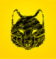 wolf face front view fox mask vector image