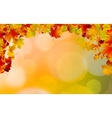 Autumn colored leaves framing EPS 8 vector image
