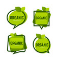 Organic product green leaves logo frames vector image