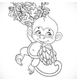 Cute baby monkey with bananas outlined isolated on vector image