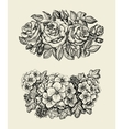 Flowers Hand drawn sketch flower roses geranium vector image