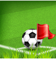 green playing field ball red flag 10 v vector image