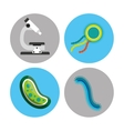 scientific laboratory bacteria vector image